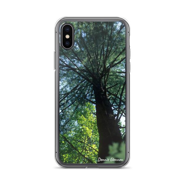 """Look Up"" Majestic Tree iPhone Phone Case - Chincoteague National Wildlife Refuge, Virginia"