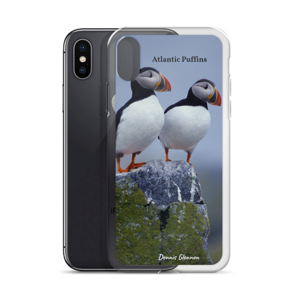 """Taking in the View"" Atlantic Puffins iPhone Case - One of Dennis' Secret Spots, Maine"