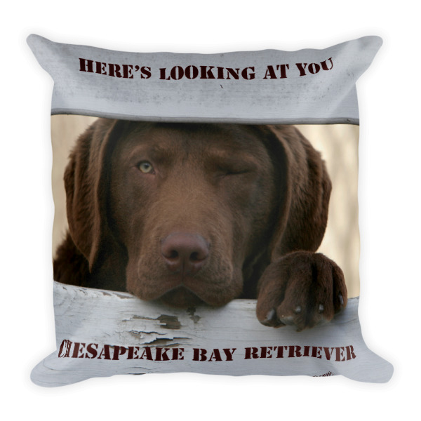 """""""Here's Looking At You"""" & """"Howling Chessie Pup"""" Chesapeake Bay Retriever Double Sided Square Pillow - Dennis Glennon Original"""