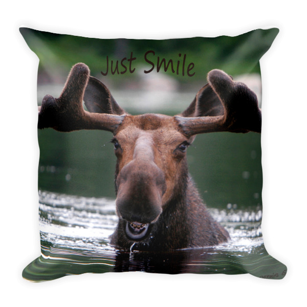 """Smiling Moose""  Square Double Sided Decorative Pillow ""Just Smile"" Collection - Dennis' Secret Spot, Maine"
