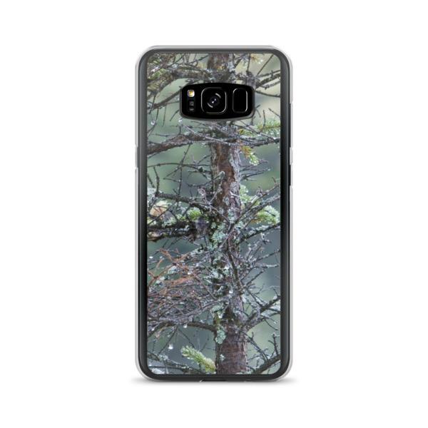 """Morning Dew"" Samsung Phone Case - Baxter State Park, Maine"