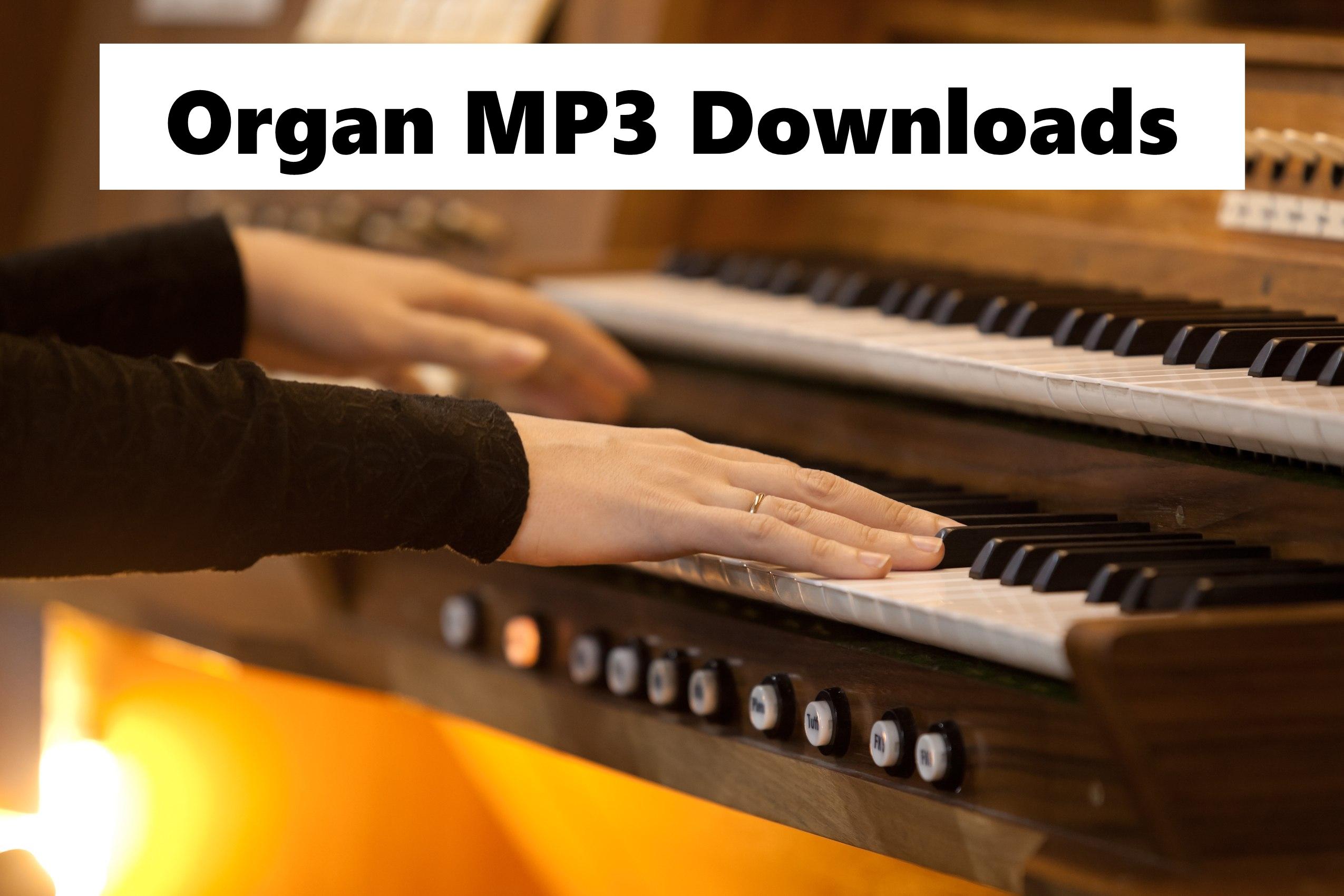 organdownloadtile.jpg