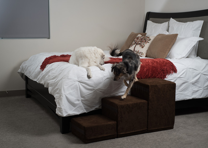 Tall Dog Stairs For Bed Usa Made Royal Ramps