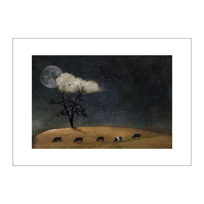 Midnight Fairy Tale