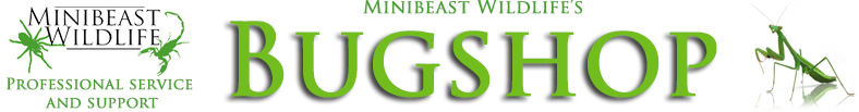 Minibeast Wildlife Bug Shop