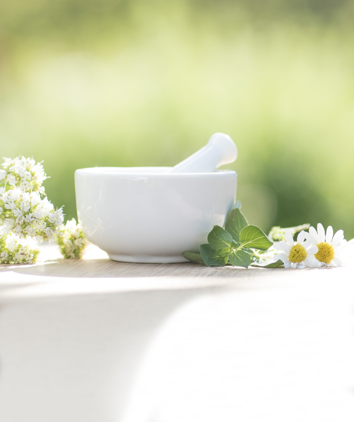Image of mortar and pestle with Chamomile and Oregano.