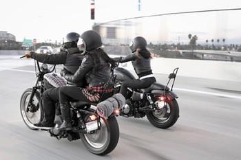 Burly Brand - Short Sissy Bar fits '04-'14 Harley XL Sportster