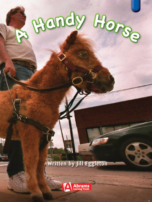 Key Links Literacy Blue A Handy Horse